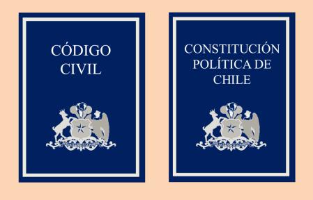 código civil, constitución, derecho de propiedad, recurso de protección